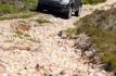 land-rover-freelander-2-45