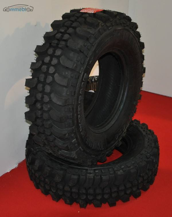 lerma gomme 5
