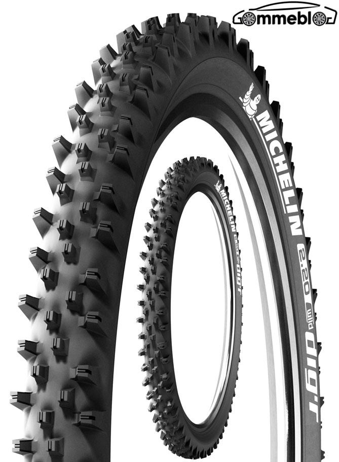 Michelin-Wild-R