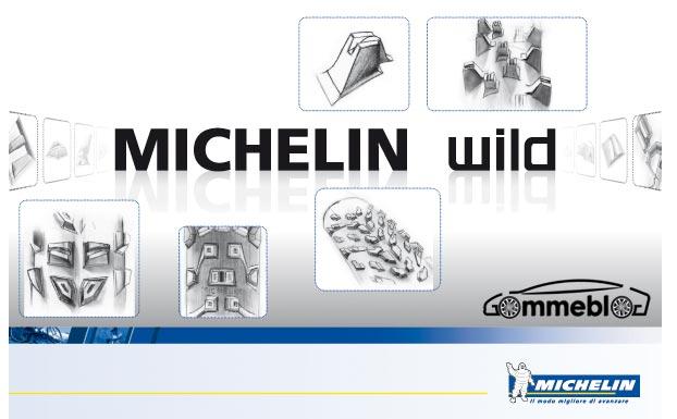 gamma Michelin MTB