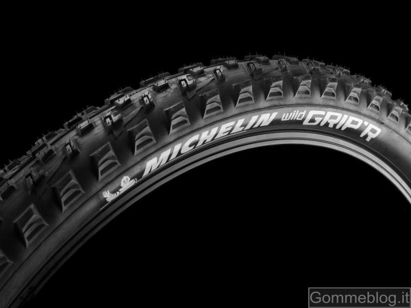Pneumatici MTB Michelin Wild Grip'R 2