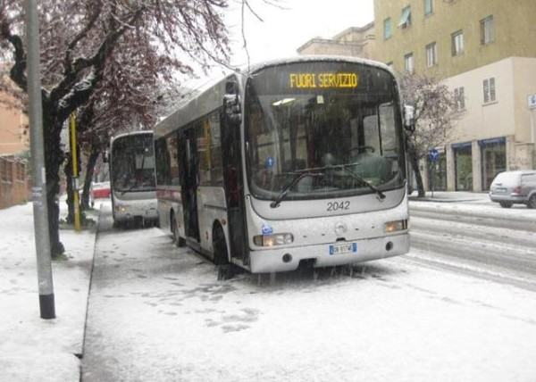 Bus gomme Neve