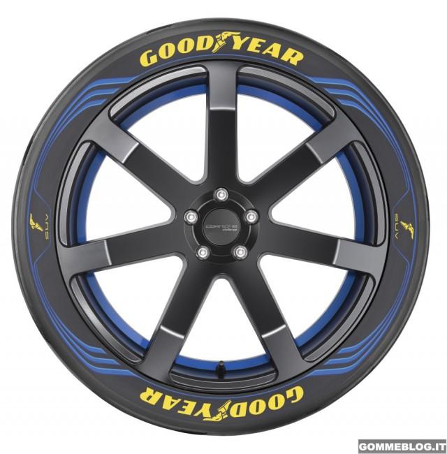 Dunlop-Goodyear-ginevra-19