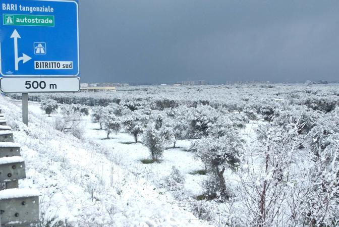 Ordinanze Pneumatici Invernali 2014 – 2015: Puglia