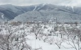 Ordinanze Pneumatici Invernali 2014 – 2015: Abruzzo