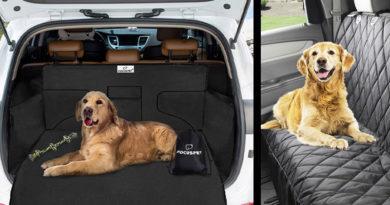 Coprisedili Cani Auto: Le MIGLIORI Fodere Sedili per i Cani